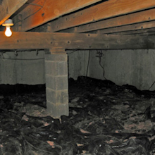 Crawlspace Cleanout Services